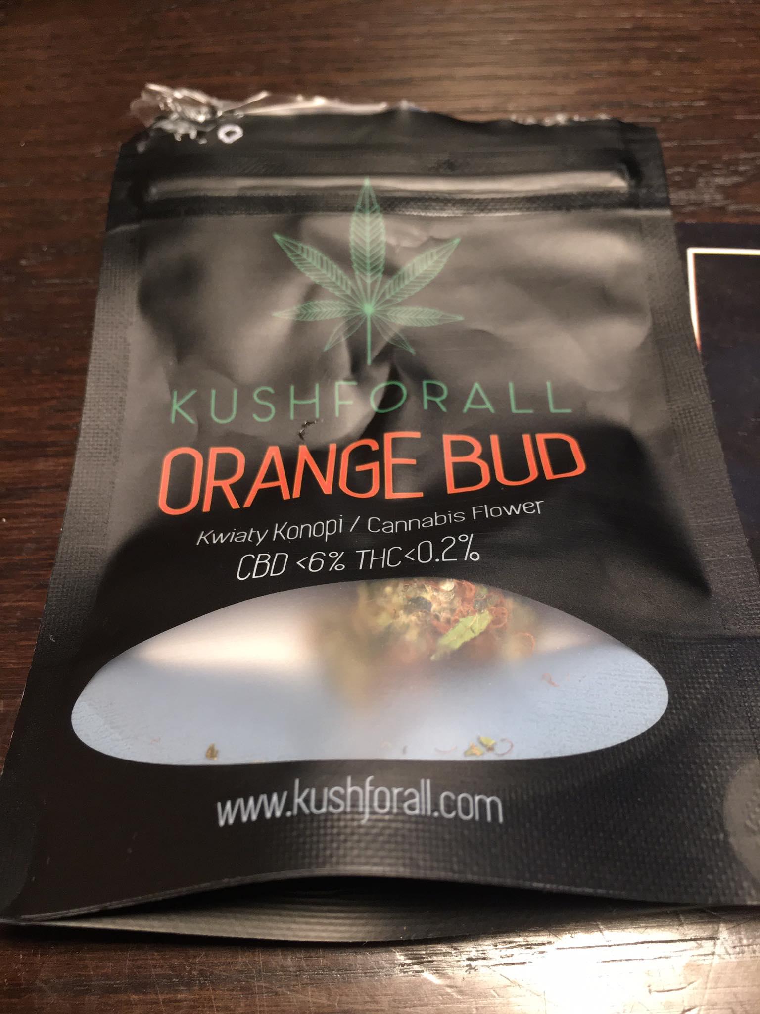 Susz Orange Bud - KushForAll