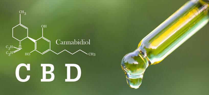 CBD - co to ; właściwości kannabidiolu